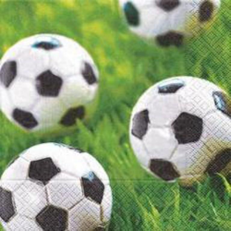 Fodboldtema