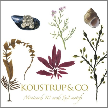 Koustrup & Co