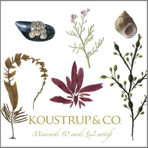 Koustrup & Co
